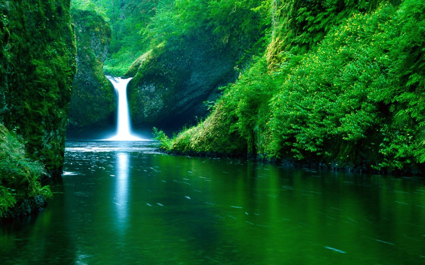 Waterfall & River